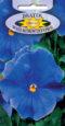 Bratek ogrodowy - Niebieski