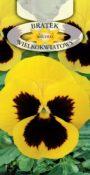 Bratek ogrodowy - Żółty z plamą