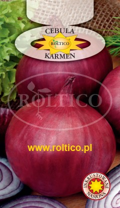 Cebula jadalna Karmen (czerwona)