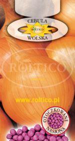 Cebula jadalna Wolska