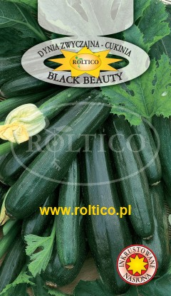 Dynia Zw. Cukinia Black Beauty