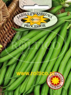 Fasola zielona Processor