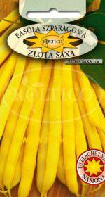 Fasola karłowa Złota Saxa