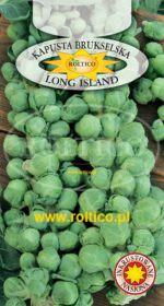 Kapusta brukselska Long Island