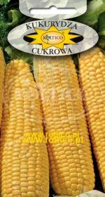 Kukurydza cukrowa Golden Bantam