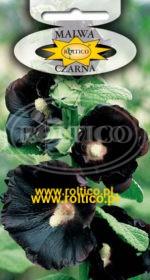 Malwa - Czarna
