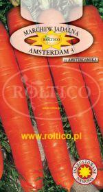 Marchew Amsterdam 3 - Amsterdamska