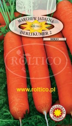 Marchew Berlikumer 2 - Berjo