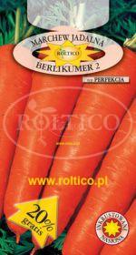 Marchew Berlikumer 2 - Perfekcja