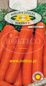 Marchew Bolero - mieszaniec F1