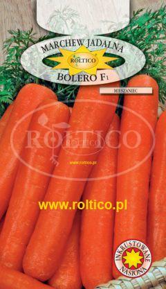 Marchew Bolero – mieszaniec F1