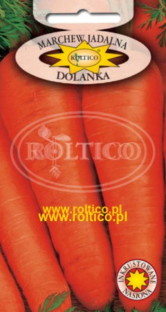 Marchew Dolanka