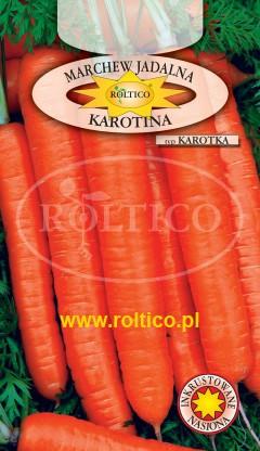 Marchew Karotina