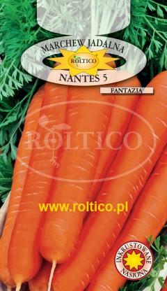 Marchew Nantes 5 - Fantazja