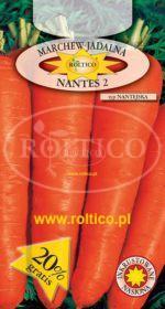Marchew Nantes 2 - Nantejska