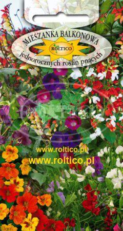 Mieszanka balkonowa jednorocznych roślin pnacych