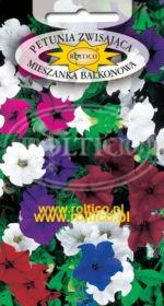 Petunia zwisająca balkonowa - Mieszanka