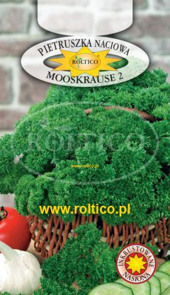 Pietruszka naciowa  Mooskrause 2 – liście karbowane