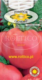 Pomidor gruntowy Oxheart (Malinowy Bawole Serce)