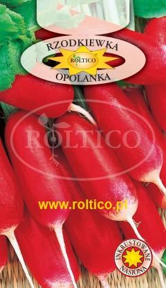 Rzodkiewka Opolanka