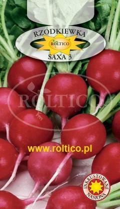 Rzodkiewka Saxa 3