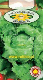 Sałata Kr. Lodowa Brasiliana