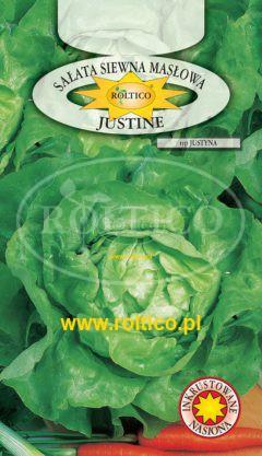 Sałata Justine – Justyna