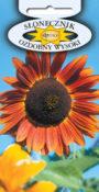 Słonecznik ozdobny - Wysoki czerwony