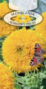 Słonecznik ozdobny - Karłowy pełny