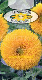 Słonecznik ozdobny - Wysoki pełny