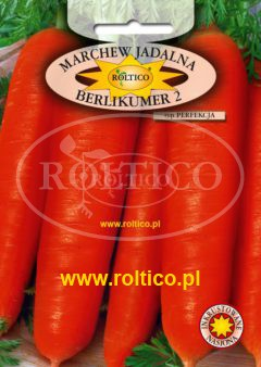 Marchew Berlikumer 2 – Perfekcja