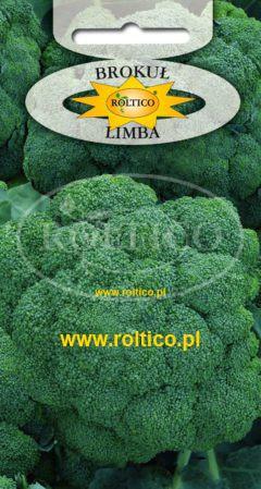 Brokuł Limba