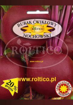 Burak ćwikłowy Nochowski