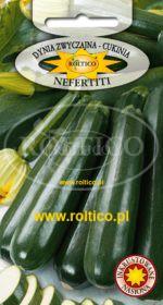 Dynia Zw. Cukinia Nefertiti
