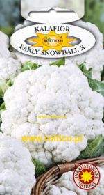 Kalafior Early Snowball X