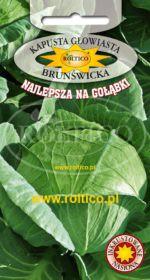 Kapusta głowiasta biała Brunświcka