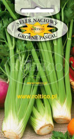 Seler naciowy Groene Pascal