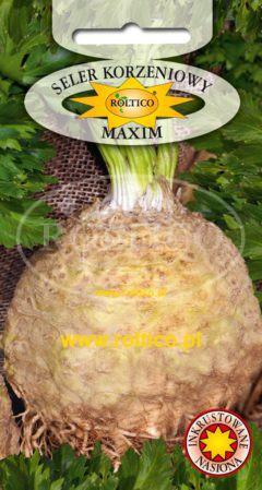 Seler korzeniowy Maxim