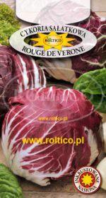Cykoria sałatowa Rouge de Verone