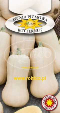 Dynia piżmowa Butternut