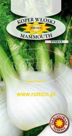 Koper włoski, Fenkuł Mammouth