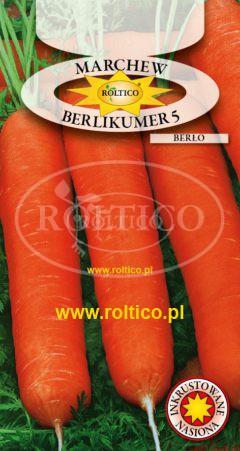 Marchew Berlikumer 5 - Berło