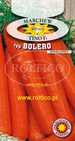 Marchew Tino - mieszaniec F1 - typ Bolero