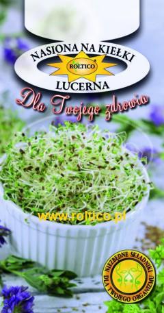 Nasiona na kiełki – Lucerna
