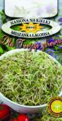 Nasiona na kiełki - Mieszanka Łagodna