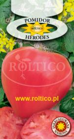 Pomidor Herodes