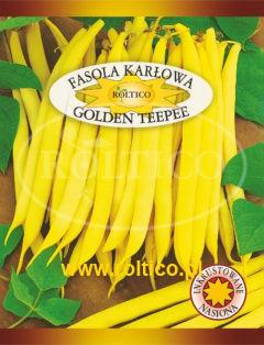 Fasola karłowa Golden Teepee