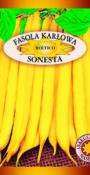 Fasola karłowa Sonesta
