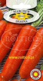 Marchew jadalna Darina