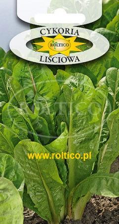 Cykoria Liściowa